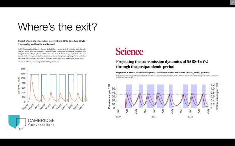 Cyclical pandemic behaviour
