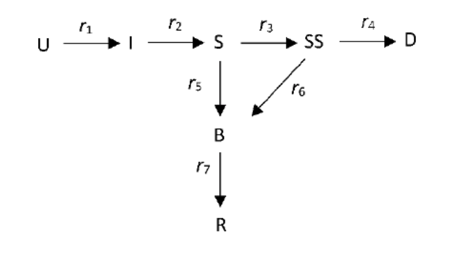 The Alex de Visscher 7 compartment model flowchart